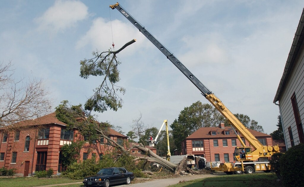Cleanup following a Hurricane Isabel
